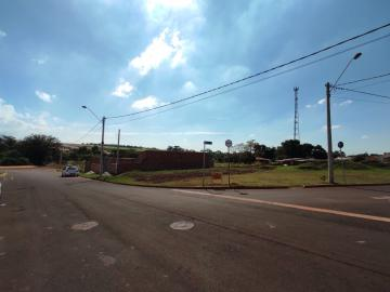 Comprar Terrenos / Padrão em Cruz das Posses R$ 133.000,00 - Foto 3
