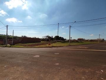 Comprar Terrenos / Padrão em Cruz das Posses R$ 133.000,00 - Foto 1