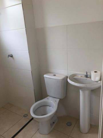 Alugar Apartamentos / Padrão em Sertãozinho R$ 750,00 - Foto 10