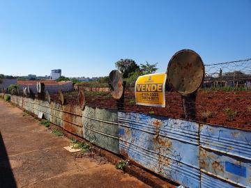 Alugar Terrenos / Padrão em Sertãozinho. apenas R$ 150.000,00