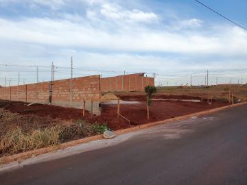 Comprar Terrenos / Padrão em Sertãozinho R$ 88.490,00 - Foto 2