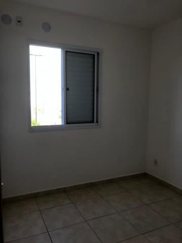 Alugar Apartamentos / Padrão em Sertãozinho R$ 600,00 - Foto 12