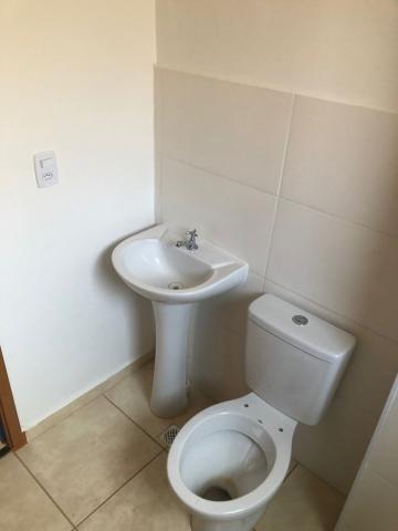 Alugar Apartamentos / Padrão em Sertãozinho R$ 800,00 - Foto 12