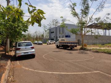 Comprar Terrenos / Industriais em Sertãozinho R$ 260.000,00 - Foto 3
