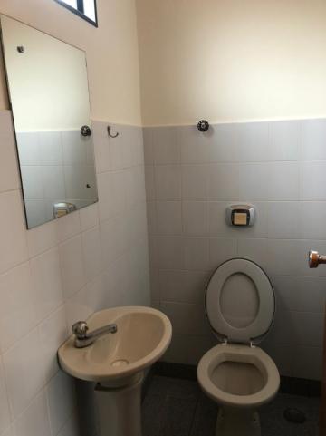 Alugar Comerciais / Sala em Sertãozinho R$ 800,00 - Foto 3