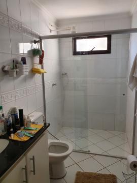 Alugar Apartamentos / Padrão em Sertãozinho R$ 1.355,00 - Foto 15